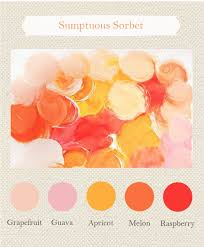 Apricot Color 235 Best Autumn Images On Pinterest Warm Autumn Color Theory