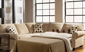 Pottery Barn Sleeper Sofa Reviews Sofa Modern Style Sectional Sleeper Sofa Ikea Sectional Sofa