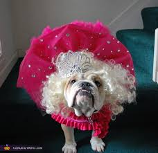 Halloween Costumes English Bulldogs Honey Boo Boo Halloween Costume Dogs