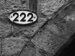 the meaning of 222 slade roberson