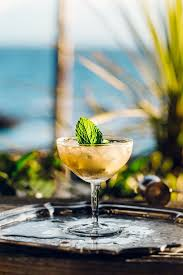 412 best imbibe me images on pinterest drink recipes cocktail