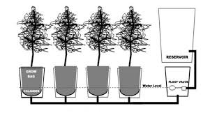 How To Make Self Watering Planters by Make Your Own Self Watering Tomato Buckets