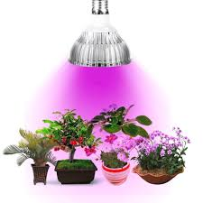 amazon com kyson led grow lights bulb plant lamp 48pcs smd full
