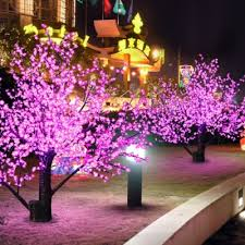 capricious pink tree lights 35 count light with white cord