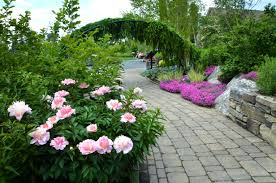 pictures of garden nice home design luxury at pictures of garden