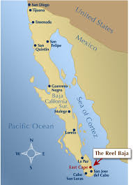 map cabo mexico the reel baja east cape fly fishing south of la paz of
