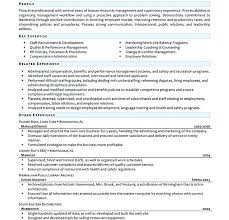entry level human resources resume u2013 inssite