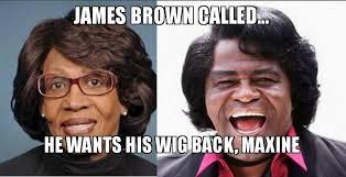James Brown Meme - james brown called he wants his wig back maxine make a meme