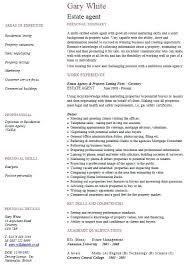 real estate resume templates real estate agents resume resume for real estate estate