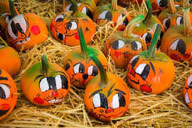 painted pumpkins free stock photo public domain pictures