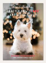 dog christmas cards dog christmas cards simply to impress