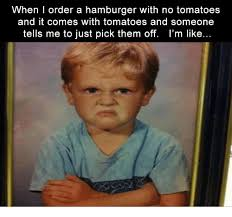 Hamburger Memes - when i order a hamburger with no tomatoes and it comes with