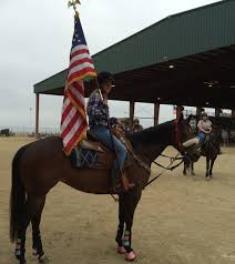 Horse With American Flag Pam Gomez Pamgomez19 Twitter