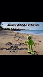 imagenes groseras rana rene rana rene meme humor pinterest ranas chistes y la rana