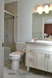 Glacier Bay Cabinet Doors by Bathroom Cozy Glacier Bay Vanity With Lenova Sinks And Mirrored
