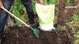 how to winterize your garden with farmer craig youtube