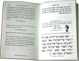 passover book haggadah passover pesach etz hayim tree of