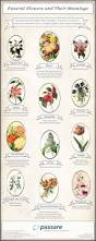 List Of Colours And Their Meanings Funeral Flowers And Their Meanings Infographics Pinterest