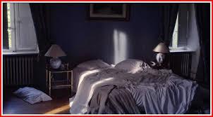 la chambre bleue the blue room aka la chambre bleue the arts justmemike s