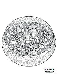 photo book pages coloring book pages free succulent terrarium coloring page
