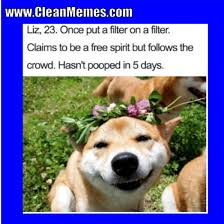 Clean Memes - dog memes page 2 clean memes