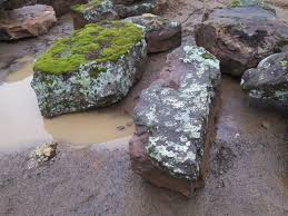 landscape boulders from pine u0027s stone company glenwood springs