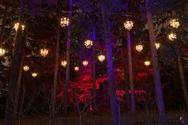 tickets on sale for illumination tree lights at the morton
