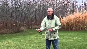 fishing trico spinner falls fly fishing hatches part iii youtube