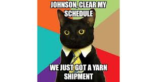 Business Cat Memes - business cat johnson clear my schedule we just got a yarn
