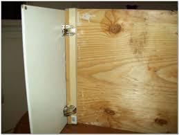Concealed Hinges Cabinet Doors Concealed Hinges Cabinet Doors Cabinet Home Decorating Ideas