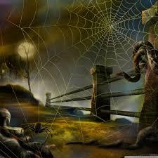 spider web hallowmas halloween hd desktop wallpaper widescreen