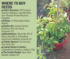 pictures home vegetable garden india free home designs photos