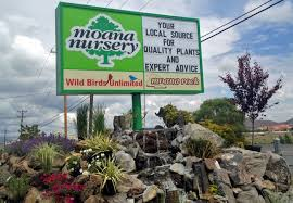 native nevada plants landscaping services garden centers u0026 florist in reno u0026 sparks