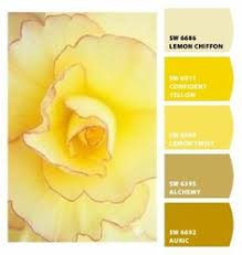 sherwin williams optimistic yellow sw 6900 yellow hello