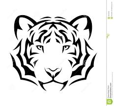 tiger stock vector illustration of cruel 30554935