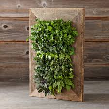 home depot planters reclaimed barn door vertical wall planter the green head