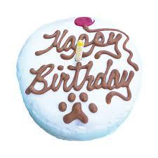 dog birthday cake dog birthday cake mini puppy kisses