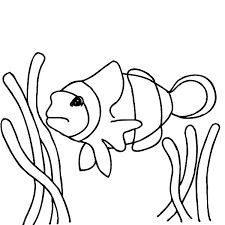 finding nemo clown fish coloring pages place color