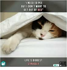 Get Out Of Bed Meme - 25 best memes about i dont want to get out of bed i dont
