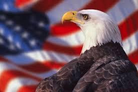 America Eagle Meme - american pride eagle meme pride best of the funny meme