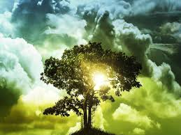 the right to the tree of ingodsimage