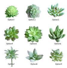 plants for office desk charming faux artificial succulent plants emulational cactus plants