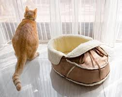 Modern Cat Bed Furniture by Unique Moccasin Pet Bed For Cats Dogs And Pets Modern Cat