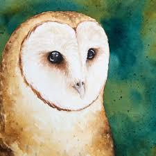 The Barn Owl Carol Stream Doodlewash