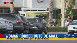 shoots out car window snatches purse during thanksgiving