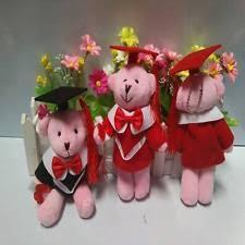 personalized graduation teddy personalized graduation teddy ebay