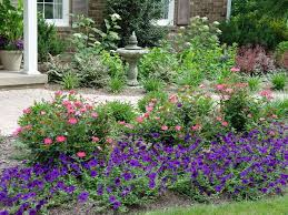 plant those flowers tomato tips lawn weeds this weekend in the