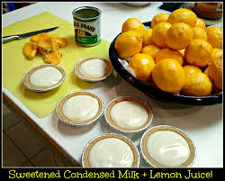 meyer lemon pie no bake and 2 ingredients eat at home