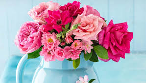 pitcher of roses check out the ti can vases roses a beautiful addition indoors or