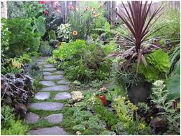 backyard planting designs backyards cozy landscape designs for small backyards australia